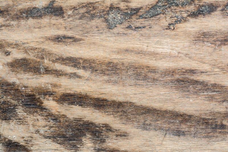De houten textuur zeer oude eik, het ruwe hout is niet eenvormig royalty-vrije stock foto
