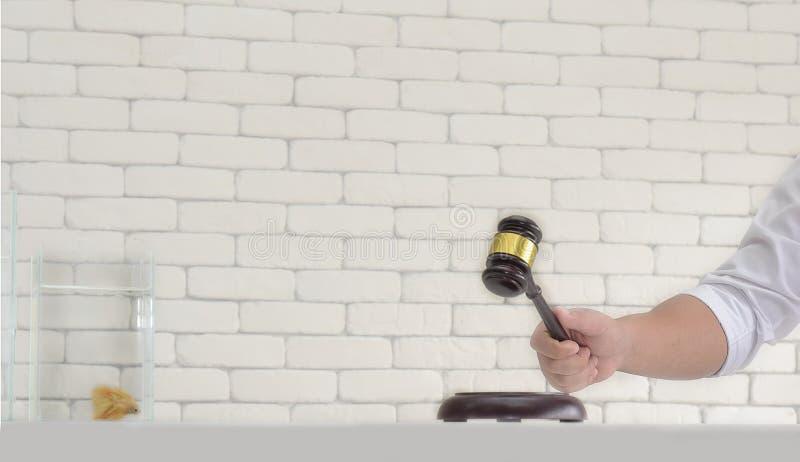 De houten veilingshamer in mensenhand wacht te veilen stock foto's