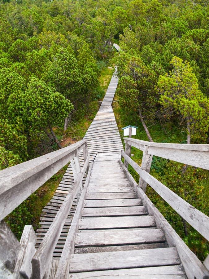 De houten weg legt binnen gebied vast royalty-vrije stock afbeelding
