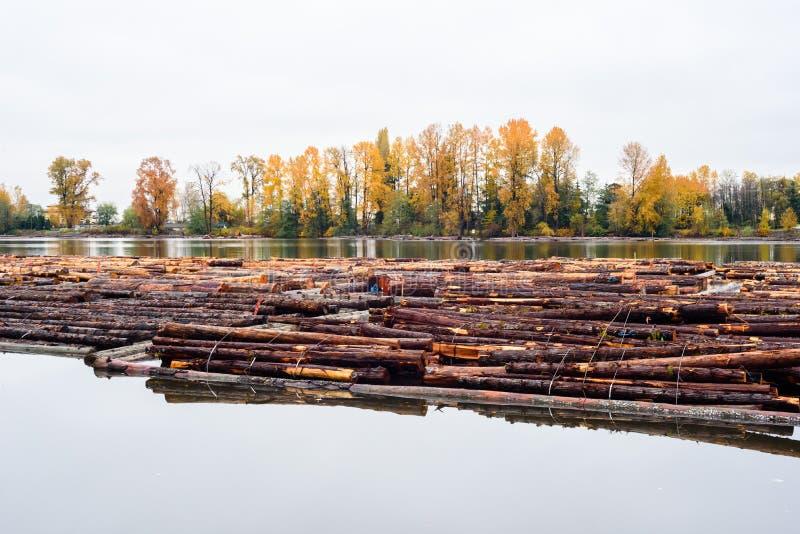 De houtlogboeken bonden en drijvend op rivier in Burnaby, BC, Canada stock afbeelding