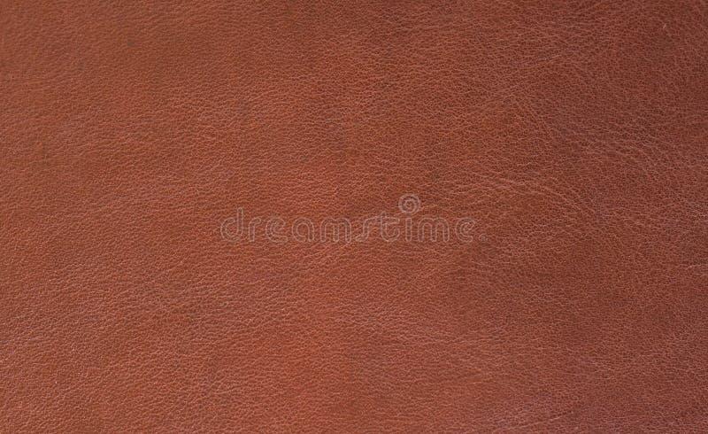 De huid van de textuur stock afbeelding