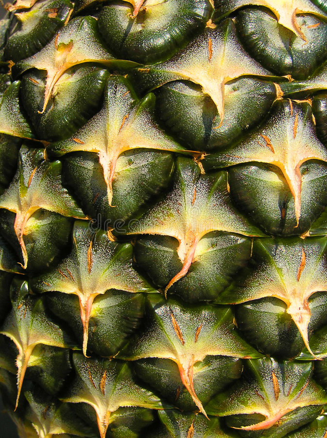 De huidtextuur van de ananas stock fotografie