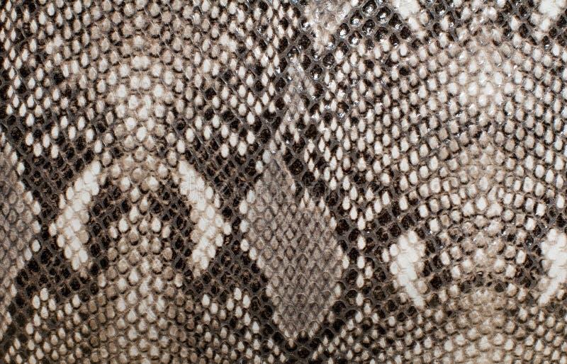 De huidtextuur van de slang stock afbeelding