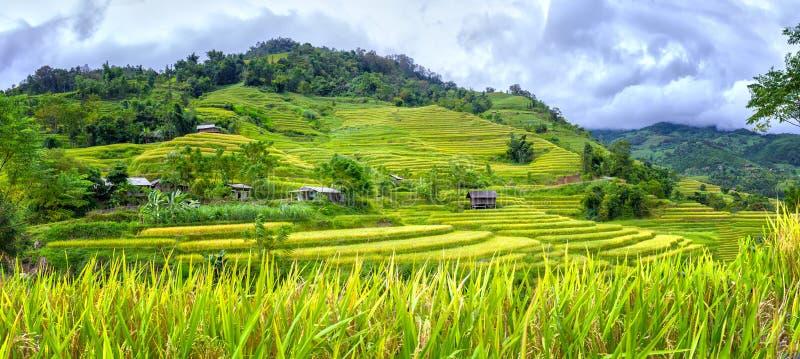 De huizen op het terrasvormige vloer idyllische platteland stock afbeeldingen
