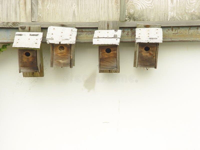 De Huizen van de vogel stock afbeeldingen