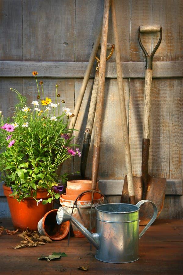 De hulpmiddelen van de tuin en een pot van de zomerbloemen in loods