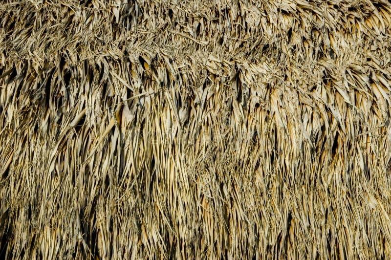 De hutdetail van Tiki. royalty-vrije stock fotografie