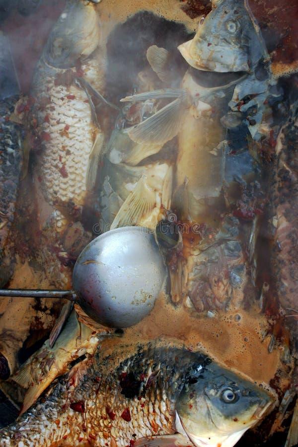 De hutspot van vissen stock foto