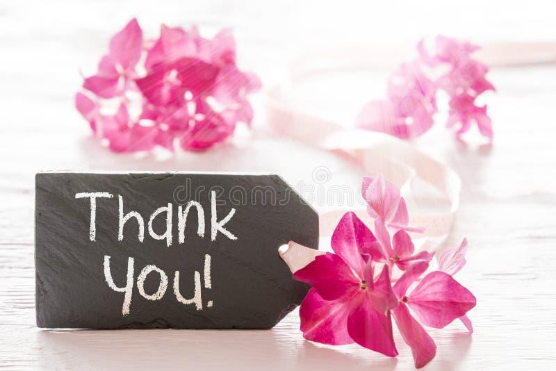 Download De Hydrangea Hortensiabloesem, Tekst Dankt U Stock Foto - Afbeelding bestaande uit teken, roze: 107706922