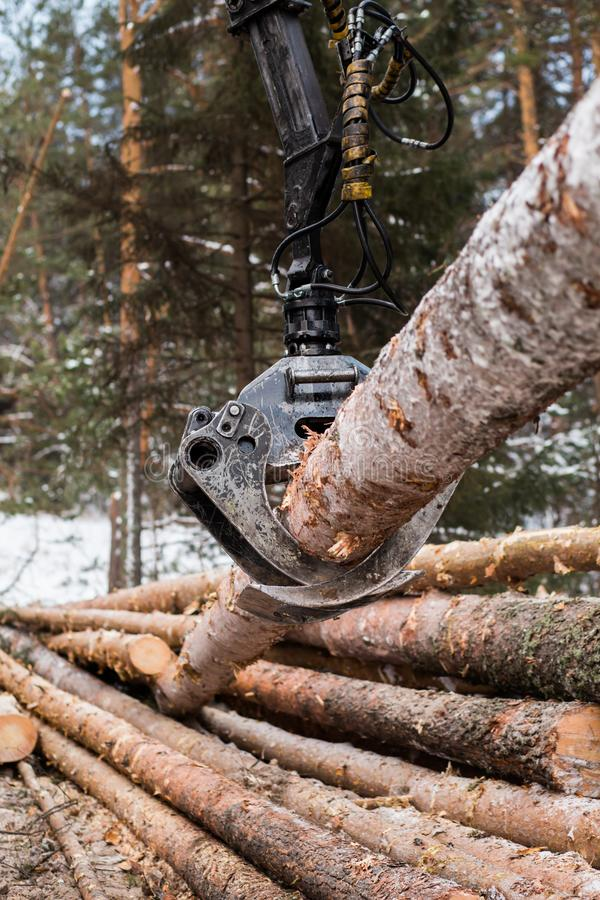 De hydraulische manipulator van het boomlogboek stock foto
