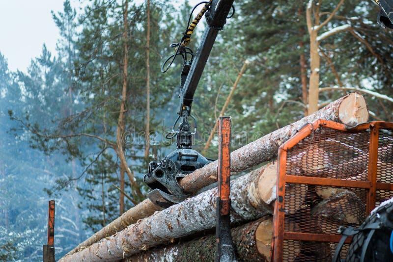 De hydraulische manipulator van het boomlogboek stock afbeeldingen