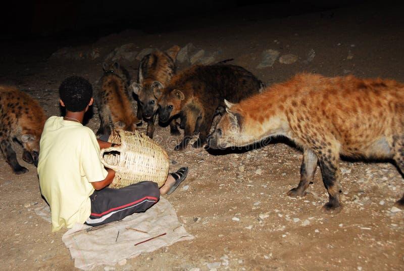 De hyenaman van Harar (Ethiopië) stock foto