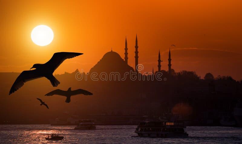 De Iconische Mening van Istanboel royalty-vrije stock foto's