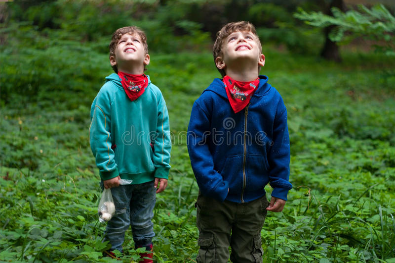 De identieke tweelingbroers kijken aan de hemel stock foto