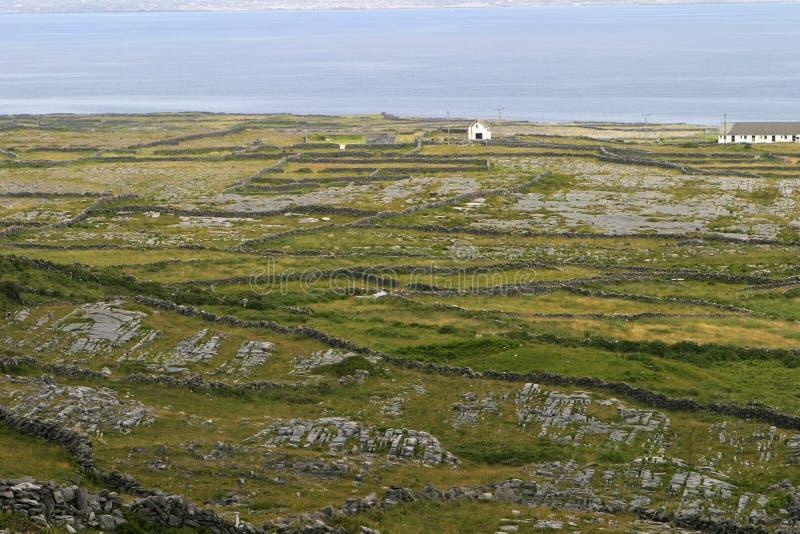 De Ierse Muren Van De Rots Stock Afbeelding