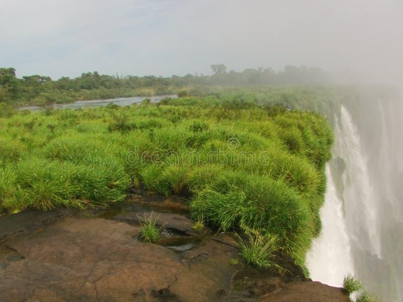 De Iguazu vattenfallen i norden av Argentina royaltyfri bild