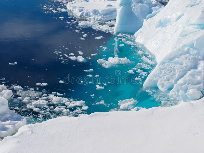 De ijsberglandschap van Antarctica royalty-vrije stock fotografie