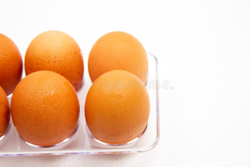 De ijskast van de eierenvorm met waterdruppeltjes op witte achtergrond stock fotografie