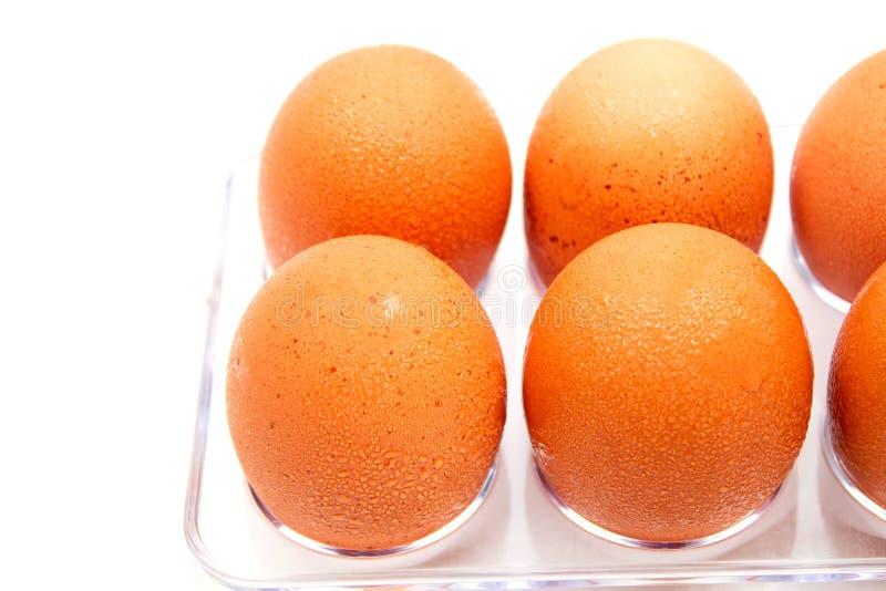 De ijskast van de eierenvorm met waterdruppeltjes op witte achtergrond royalty-vrije stock afbeeldingen