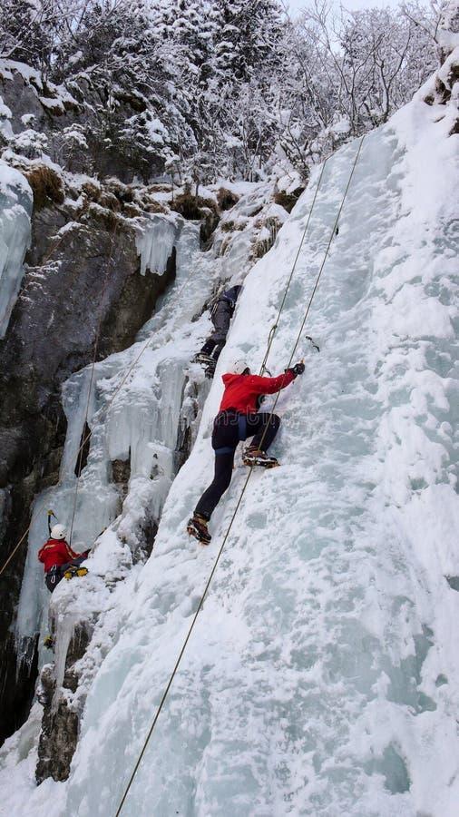 De ijsklimmers op een n-ijs vallen in de Zwitserse Alpen tijdens een ijs beklimmend cursus royalty-vrije stock foto's