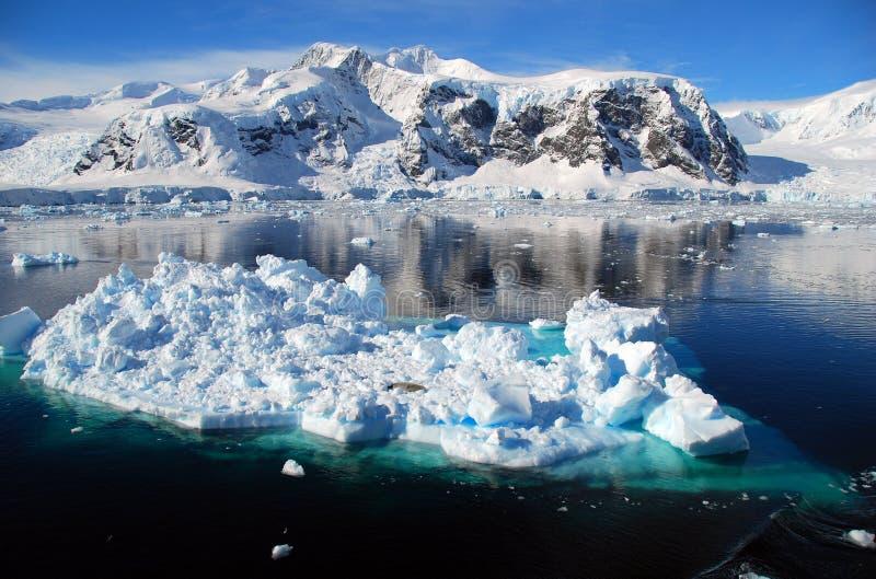 De ijsschol van het ijs in antarctisch landschap stock foto's