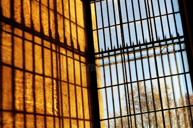 de ijzergevangenis verspert zonsopgang en bomen stock afbeelding