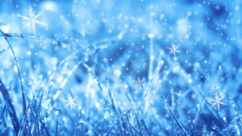 De ijzige ochtend van de winter De achtergrond van de de wintersneeuw, blauwe kleur, sneeuwvlokken, zonlicht, macro vector illustratie