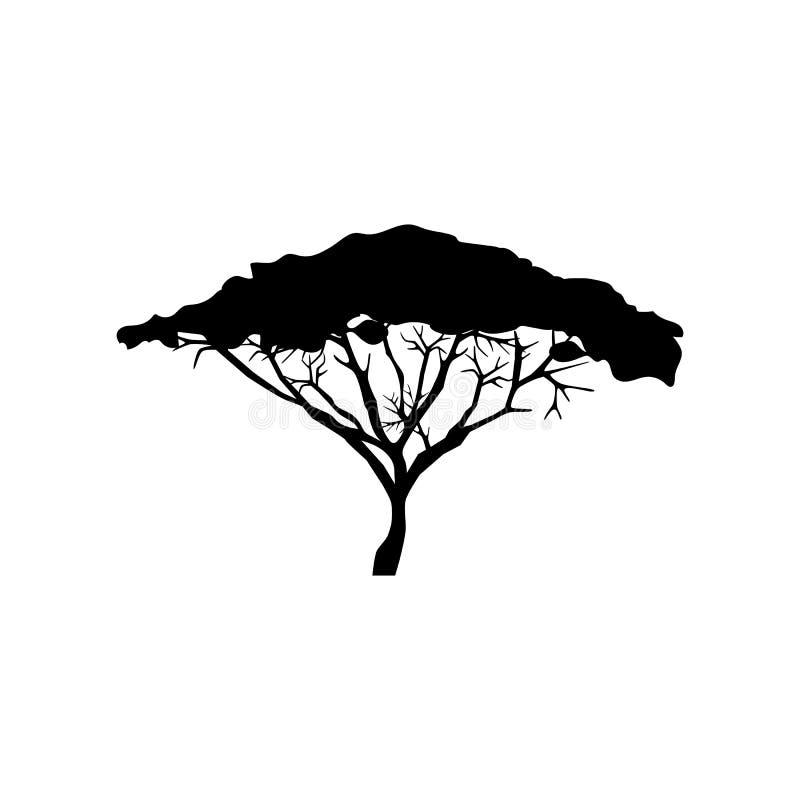 De illustratie van de acaciaboom stock illustratie