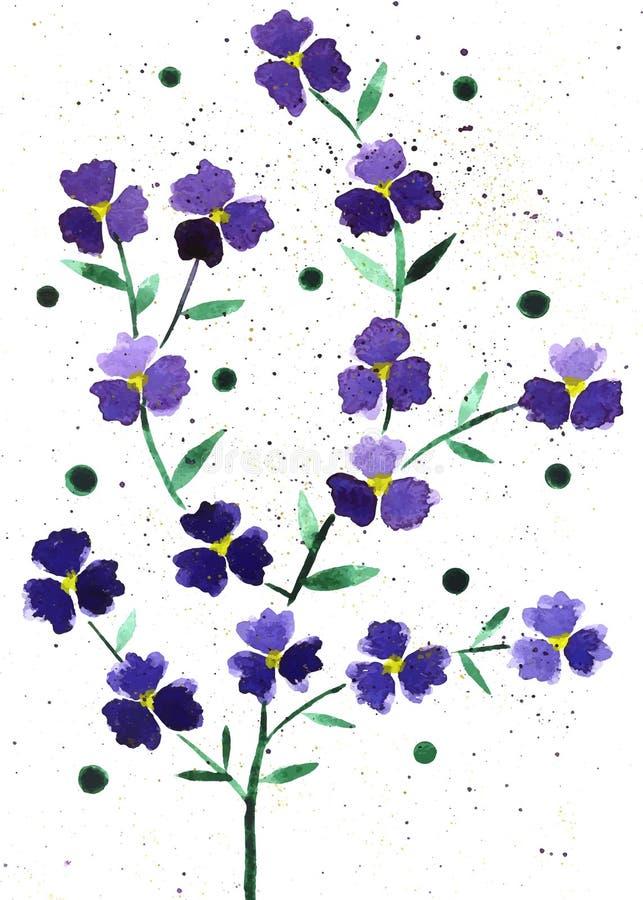 De illustratie van de bloemenwaterverf, vectorsamenstelling royalty-vrije stock fotografie