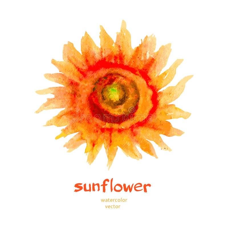 De illustratie van de zonnebloemwaterverf op witte achtergrond, hand wordt geïsoleerd het getrokken artistieke vector schilderen  stock illustratie