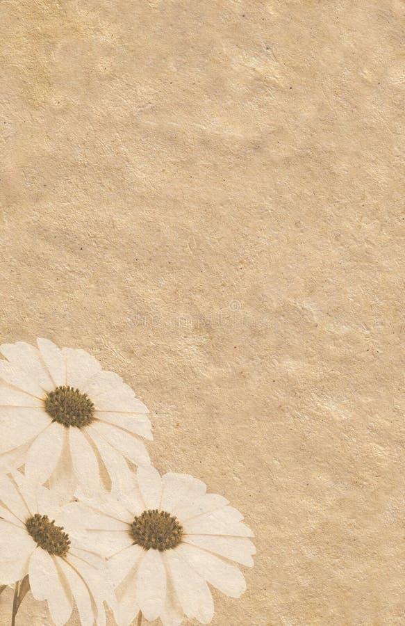 De illustratie van drie Goudsbloemen grunge vector illustratie