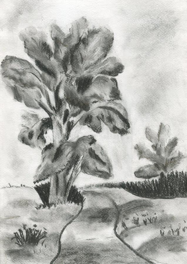 De illustratie van een boom royalty-vrije stock fotografie