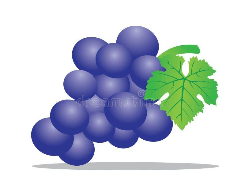 De illustratie van het druivenfruit vector illustratie