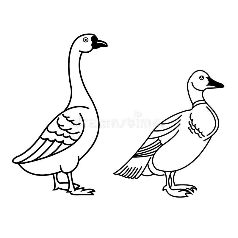 De illustratie van het eendpictogram op wit achtergrondtekensymbool dat wordt geïsoleerd royalty-vrije illustratie