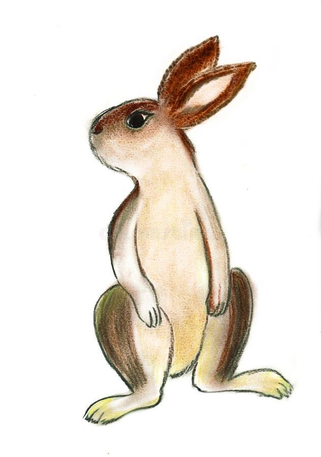 De Illustratie van het konijn stock illustratie