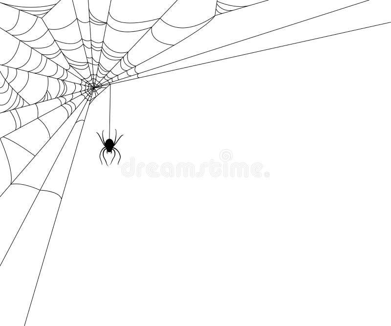 De Illustratie van het spinneweb royalty-vrije illustratie