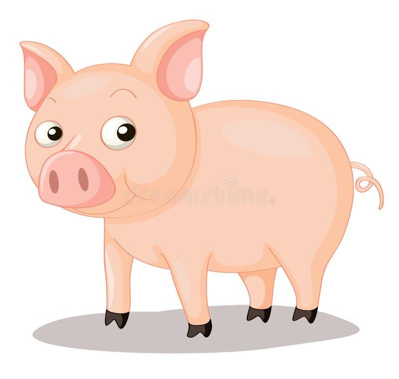 De illustratie van het varken vector illustratie