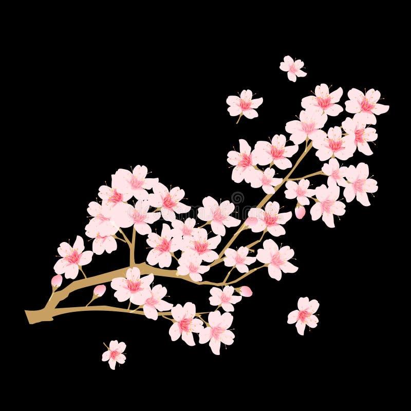 De illustratie van de kersenbloesem royalty-vrije illustratie