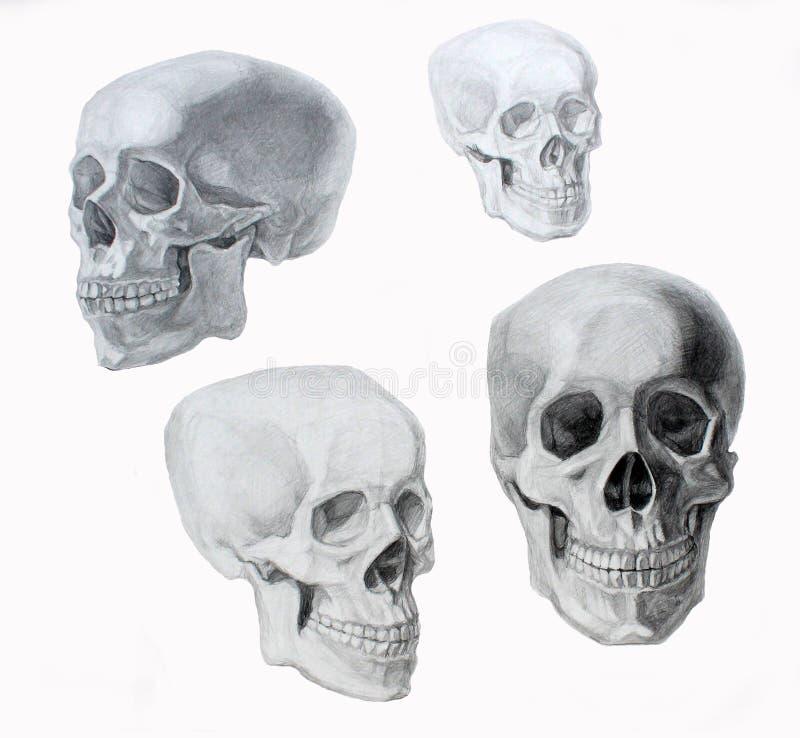 De illustratie van de schedelgrafiek stock foto