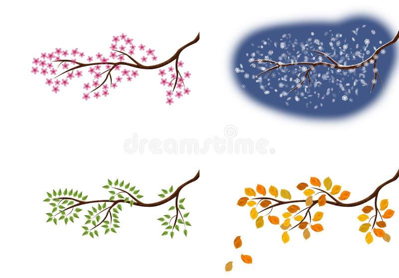 De illustratie van de takken van de vier seizoenen, boom met verschillend zoekt elk seizoen royalty-vrije illustratie