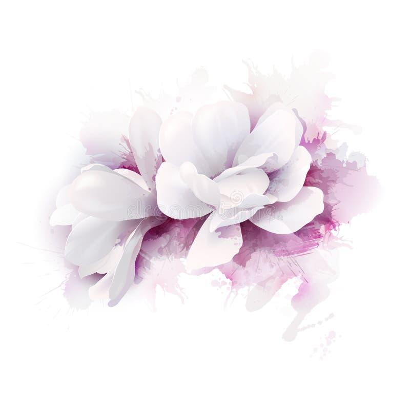 De illustratie van twee witte mooie Magnolia's, springt elegante die bloemen op op de waterverfachtergrond worden afgeschilderd stock illustratie