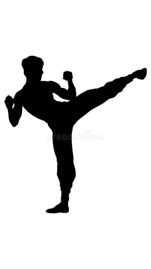 De illustratie van de vechtsportentrainer stock illustratie