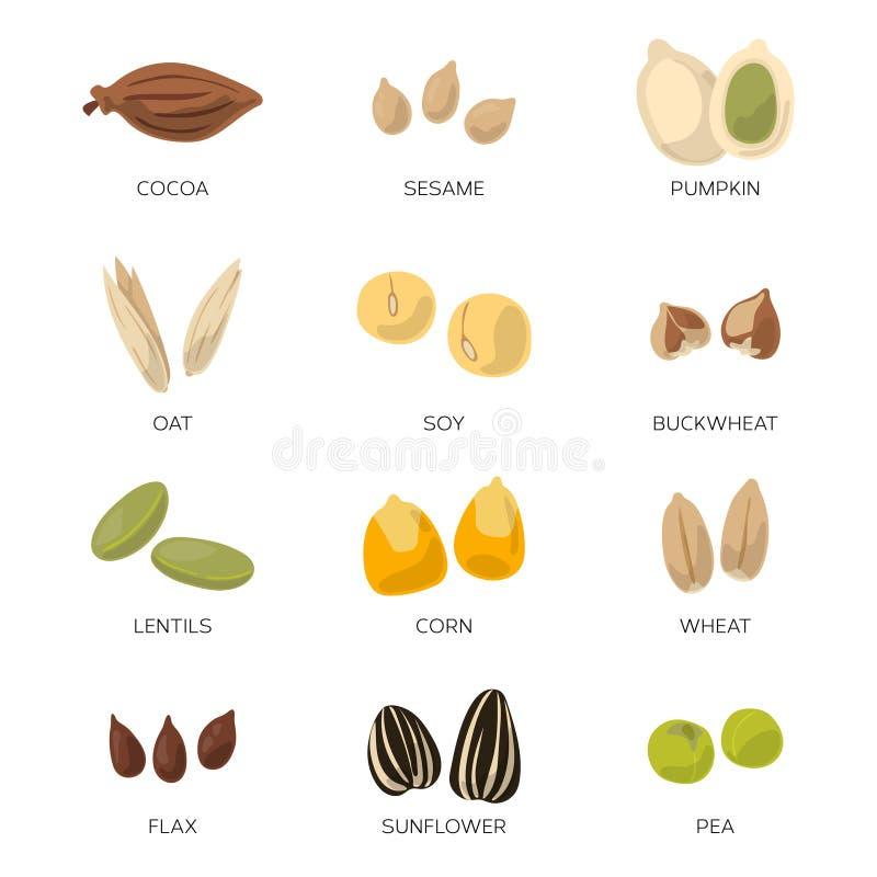 De illustratie van verschillende zaden isoleert op witte achtergrond Vector geplaatste pictogrammen vector illustratie