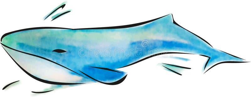 De illustratie van de walviswaterverf, overzeese dierlijke, blauwe oceaanbewoner, onderwaterfauna royalty-vrije illustratie