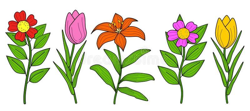 De Illustratievector van de bloeminzameling vector illustratie
