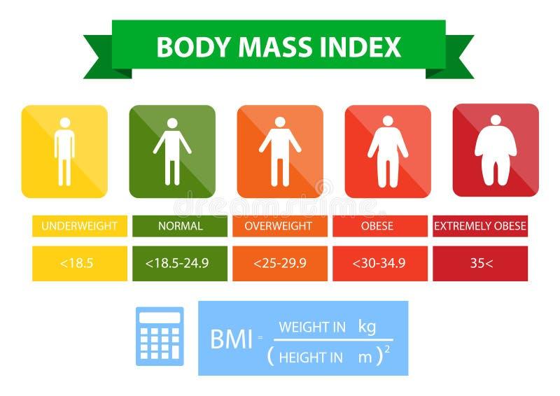 De indexillustratie van de lichaamsmassa van ondergewicht aan uiterst zwaarlijvig royalty-vrije illustratie