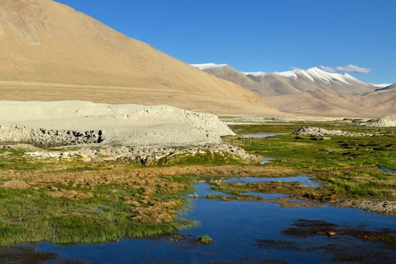 De Indische bergen van Himalayagebergte - Karakorum-strekken zich uit - Tso Kar Lake royalty-vrije stock fotografie