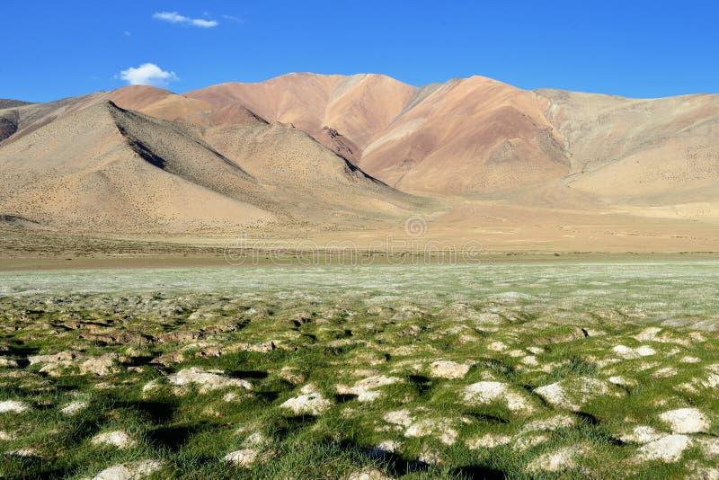 De Indische bergen van Himalayagebergte - Karakorum-strekken zich uit - Tso Kar Lake stock afbeeldingen