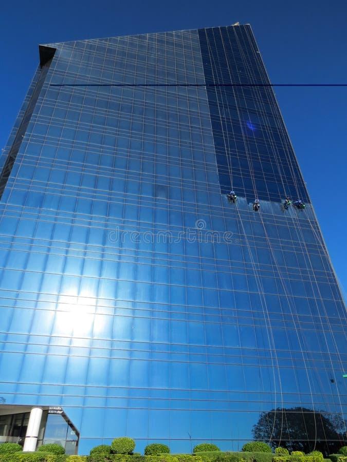 De industriële klimmers wassen de glasvoorgevel van een high-rise gebouw stock fotografie