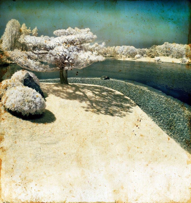 De infrarode Boom van de Pijnboom door het Meer Grunge royalty-vrije stock foto's